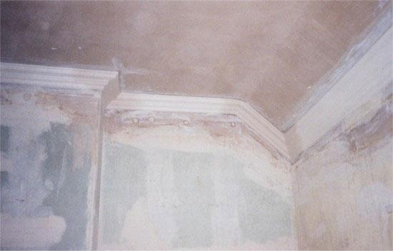 Plasterwrx Solid Amp Decorative Plasterwork Specialists
